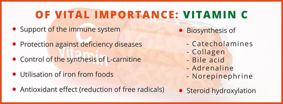Of_Vital_Importance_Vitamin_C_EN